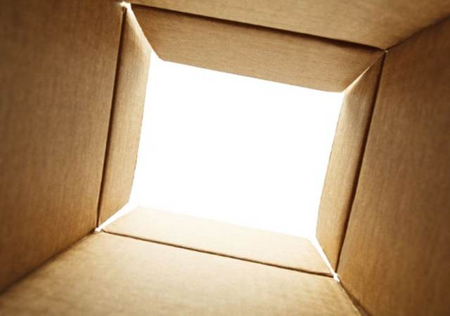 looking out of the bottom of a box