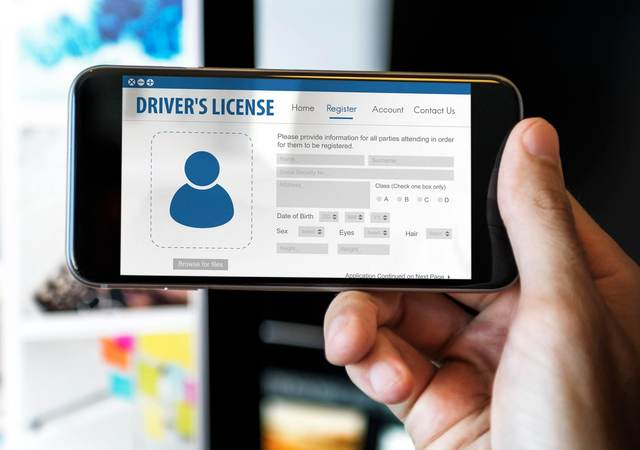 Digital driver's license card identification data information concept