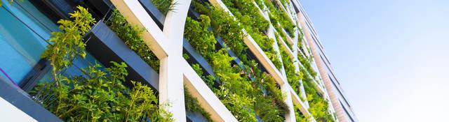 Glass building with plants near windows