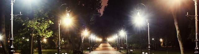 Park pathway lit up at night