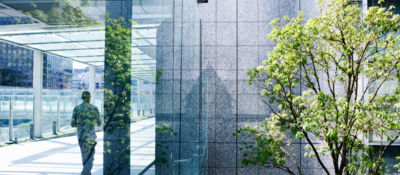 Silhouettes of a green tree and a business man walking on a passage through glass