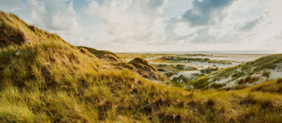 Grassy sand dune on a cloudy day