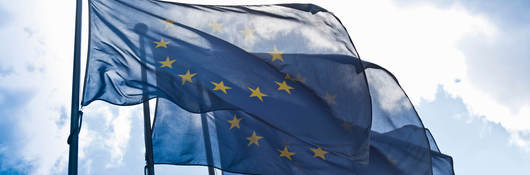European Union Flags Against Blue Sky
