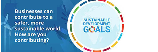 Depiction of sustainable development goals