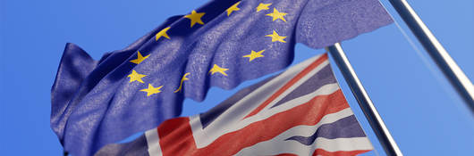 BREXIT: Key Implications for Global Retailers and Brands