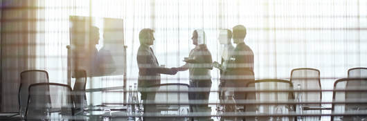 Group of people in a meeting shaking hands.