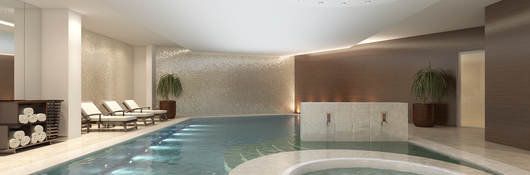 Luxurious pool and spa