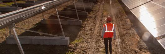 Employee inspecting solar panels