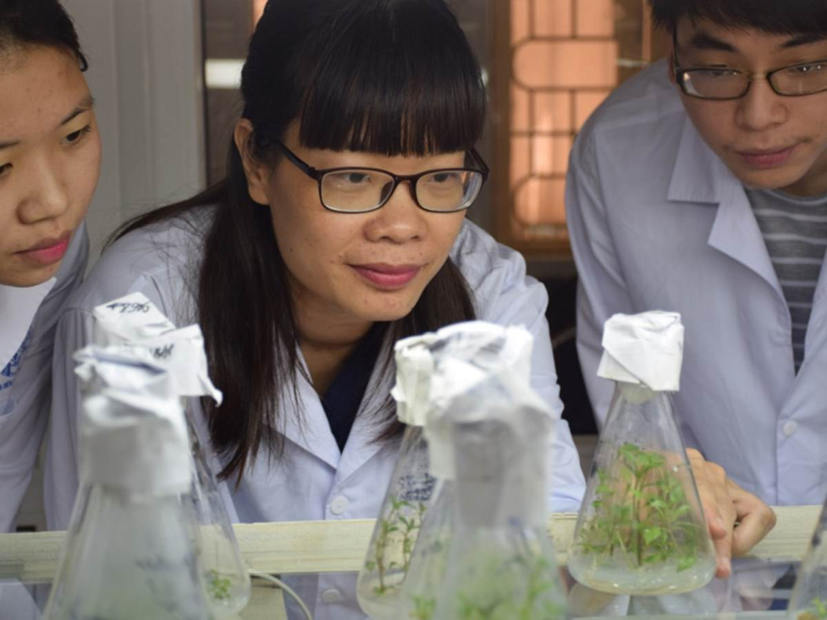 ASEAN-U.S. Science Prize scientists peer at plants being grown in glass cylinders, Dr. Vanessa Teo is the ASEAN-U.S. Science Prize for Women finalist from Brunei Darussalam, Dr. Vanessa Teo