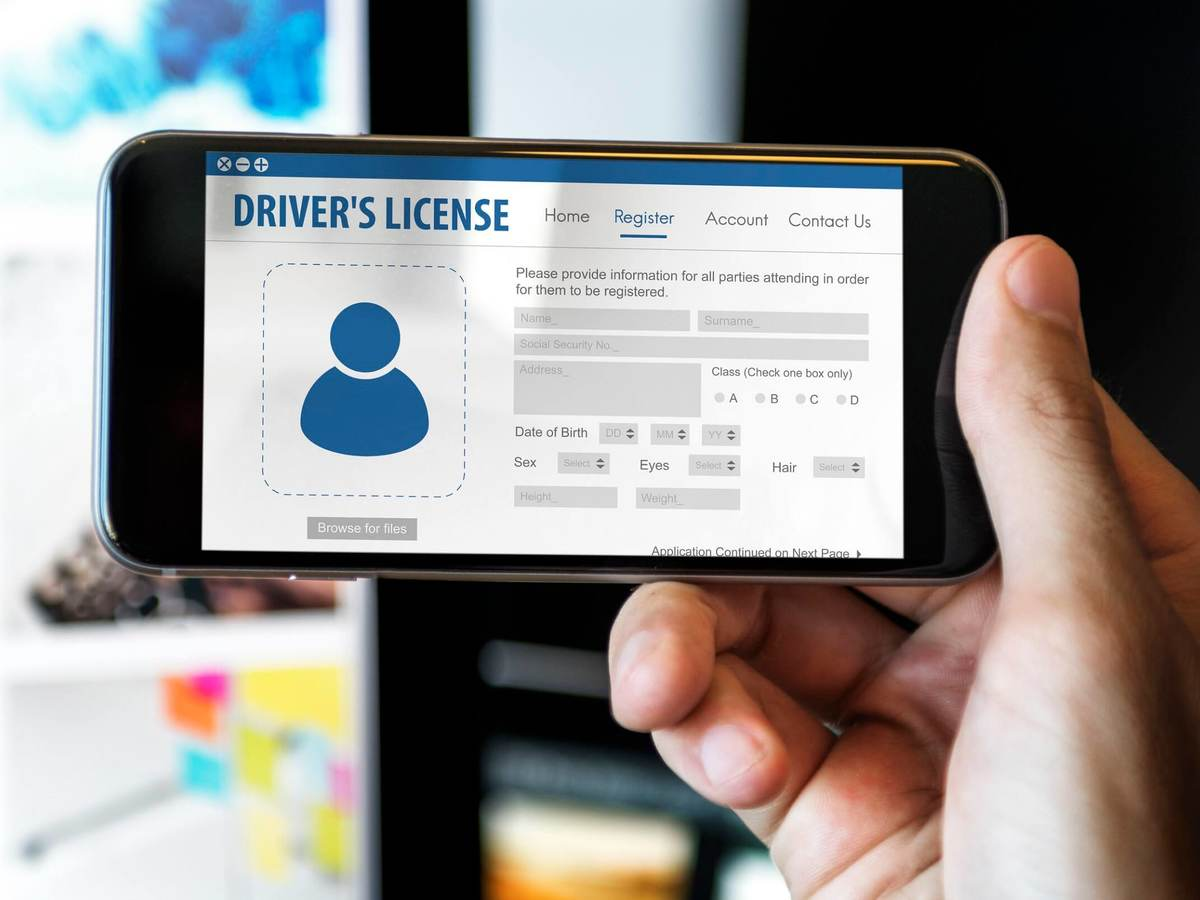 Digital driver's license card identification data information concept