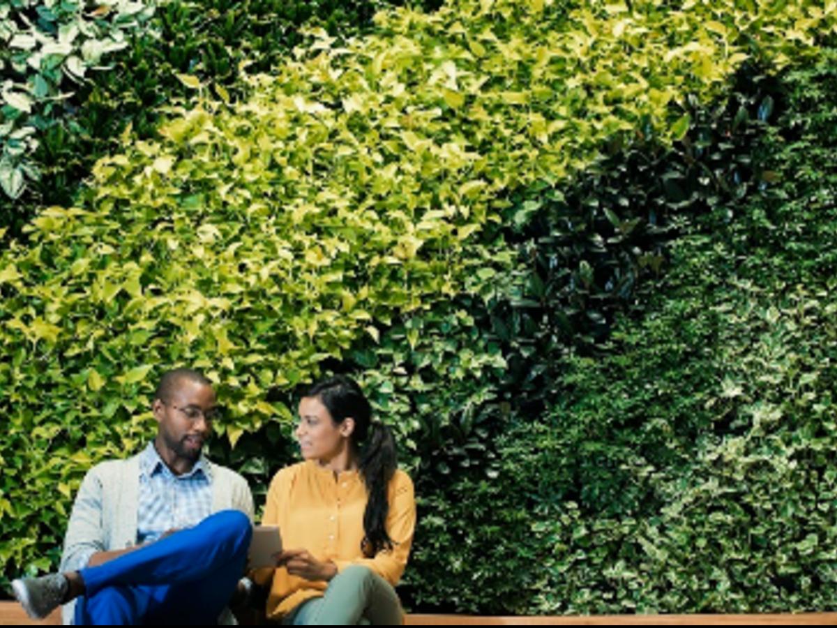 man-woman-living-wall-greenery