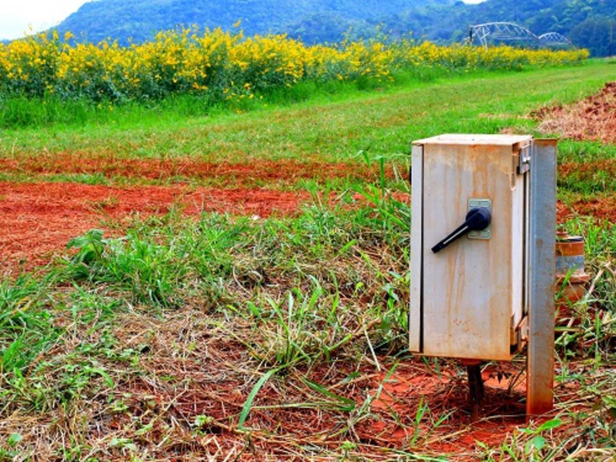 An electrical cabinet in a lush, green field.