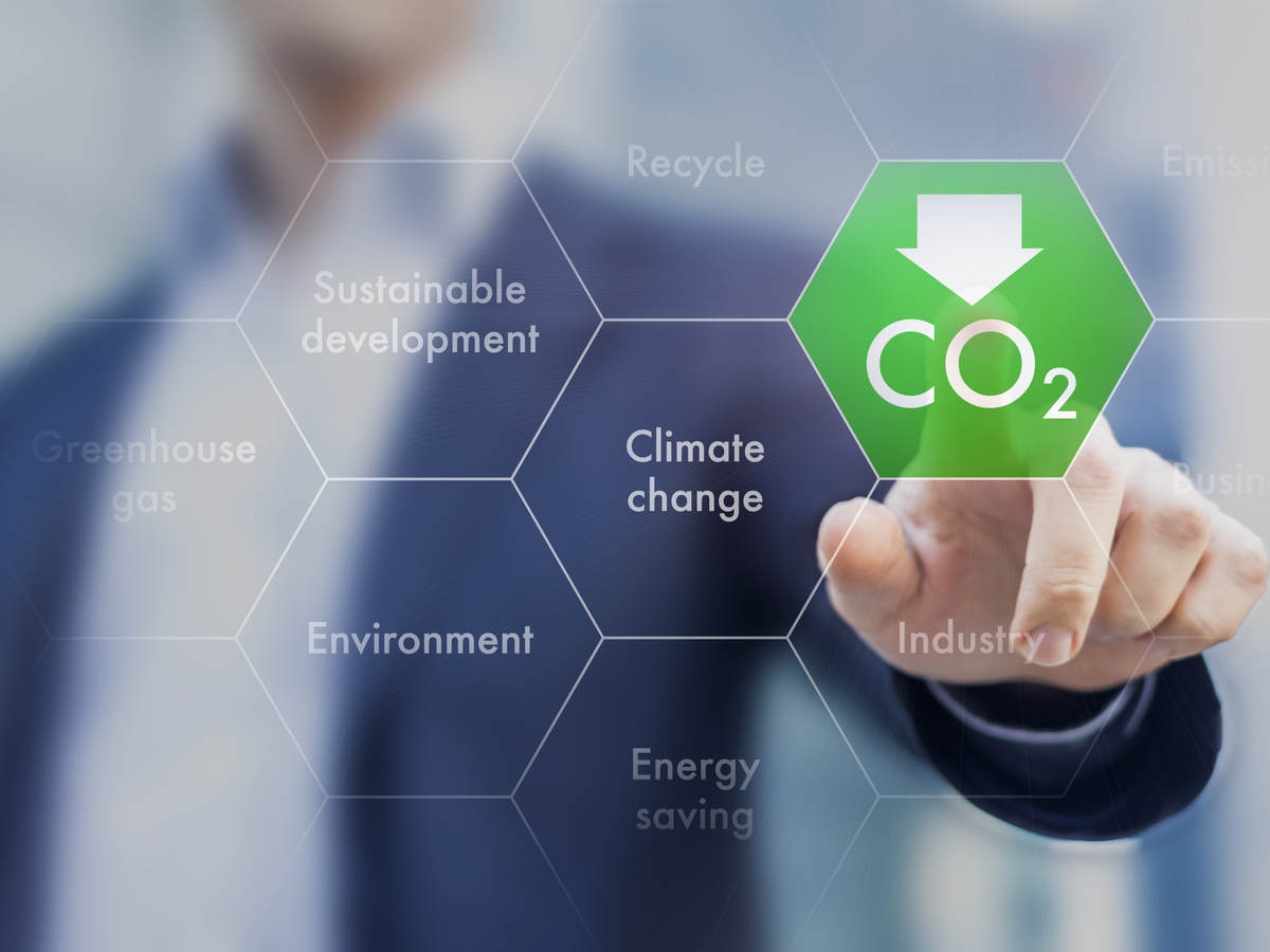 Enabling Carbon Reporting in the Supply Chain