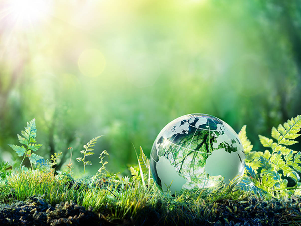 Globe on moss