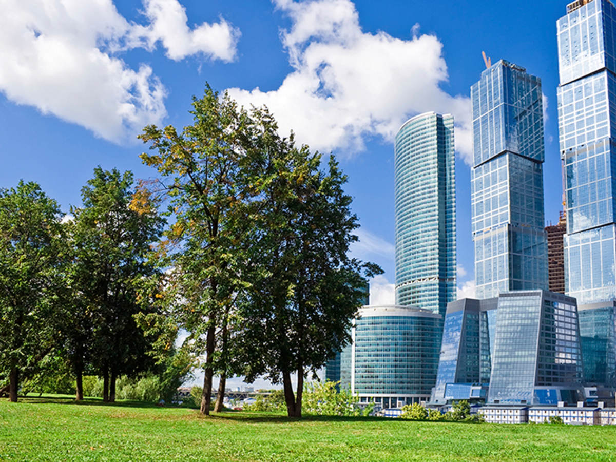 Glass skyscrapers next to trees against a blue sky