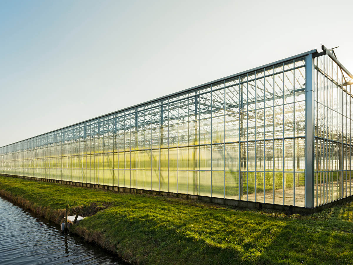 A greenhouse surrounded by green grass sits near the edge of the water on a clear day