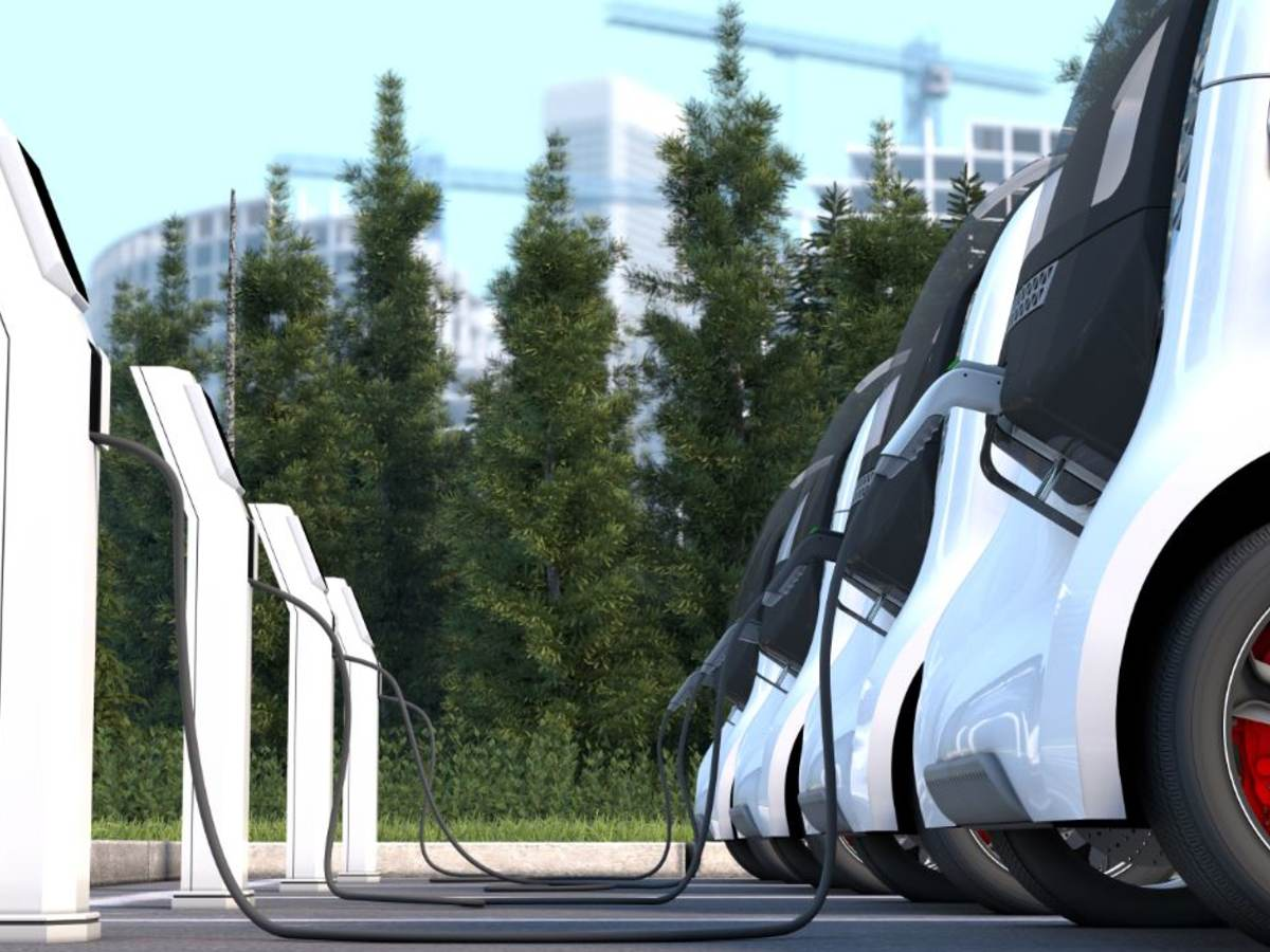 electric cars plugged in to chargers