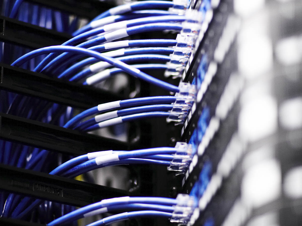 Close up image of cables connected to a server