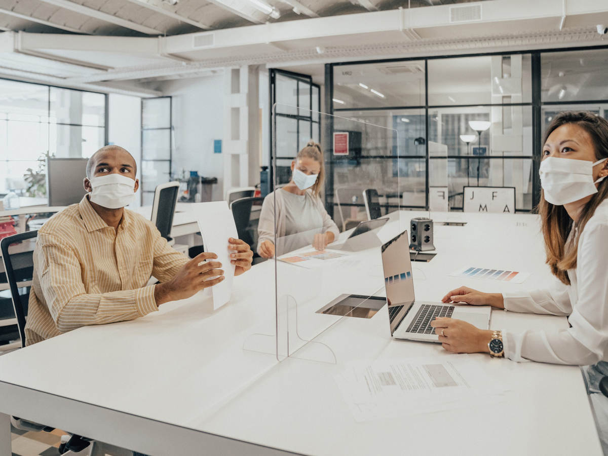 People in open office environment working separated by transparent dividers