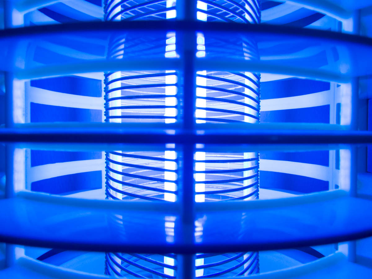 Blue Halogen Light