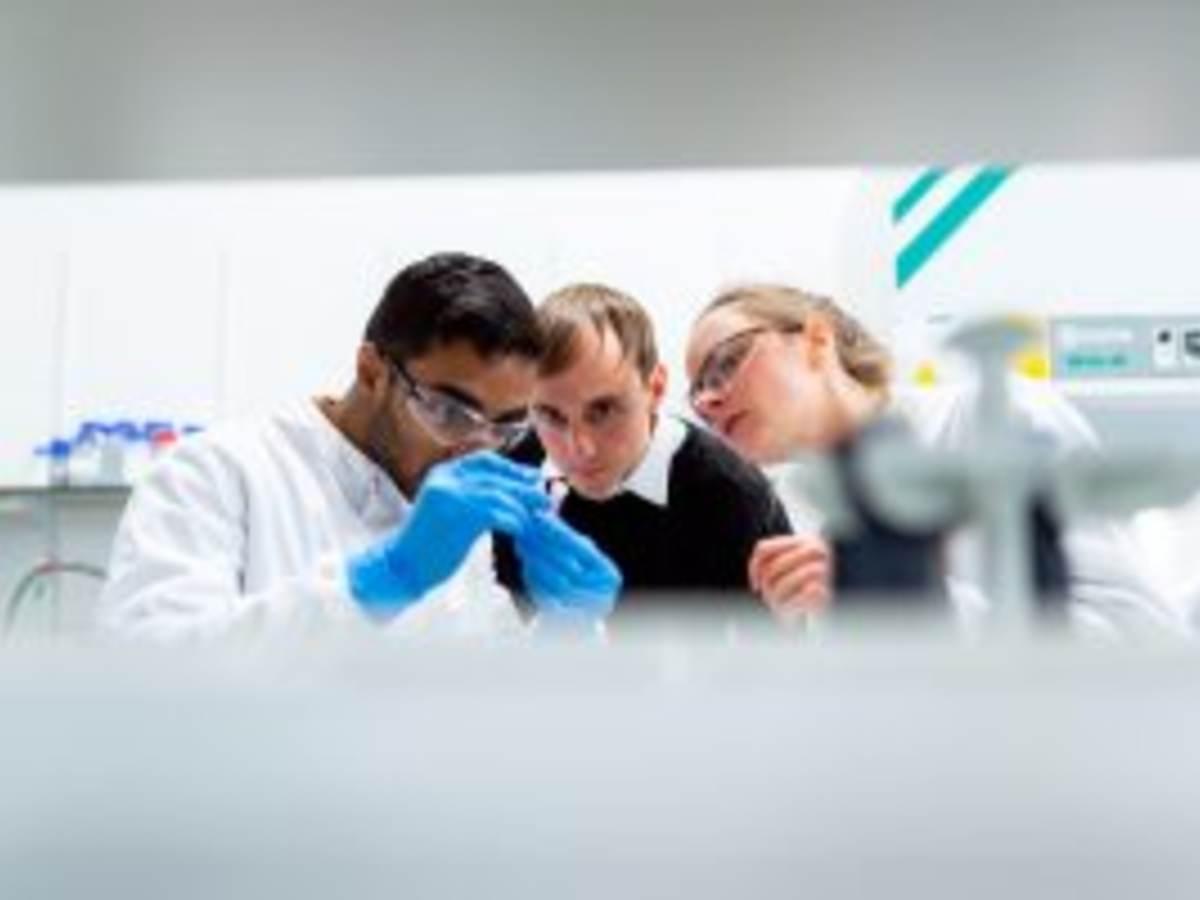 Scientists looking at vial