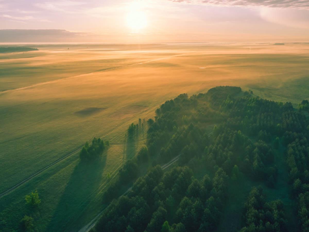 Sunset on open field