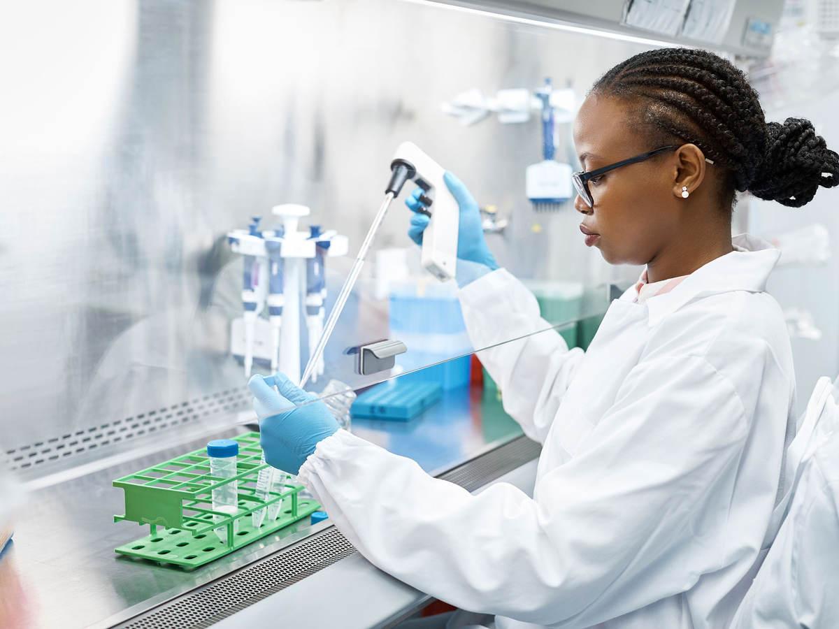 Scientist analyzes lab samples