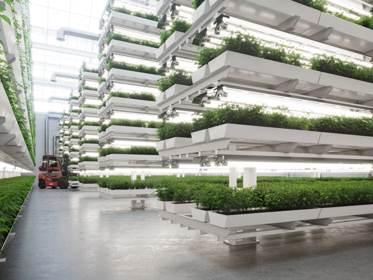 Indoor vertical farming system