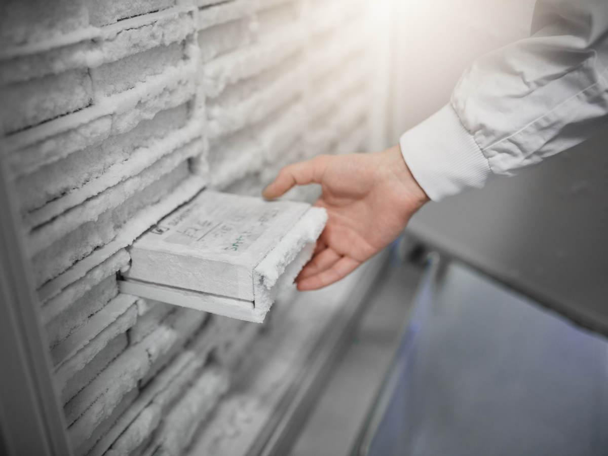 A scientist removing a sample from a laboratory freezer