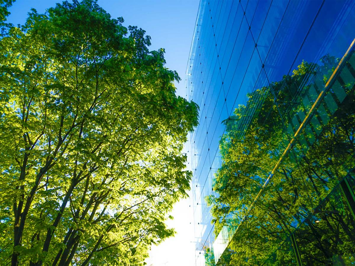 blue glass office building windows exterior with view of sky and trees